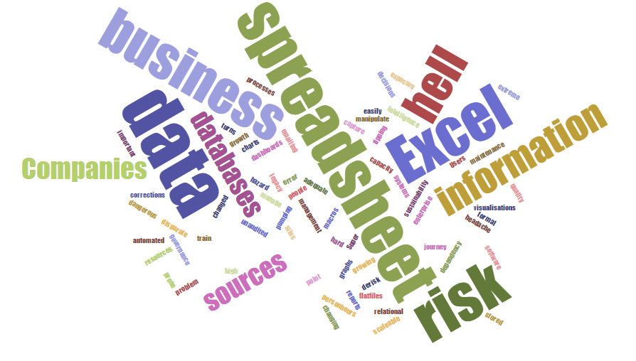 word cloud risk2.png